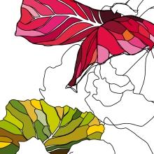 avatar graphisme